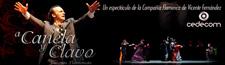 Espectaculo flamenco en DVD en aleman, ingles, frances y japones